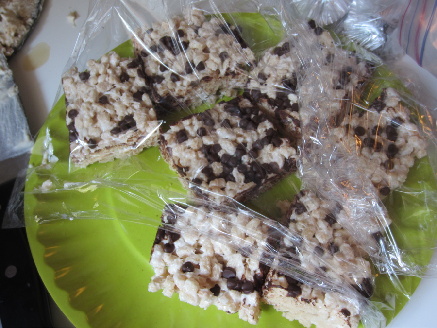 Veganic treats with chocolate chips