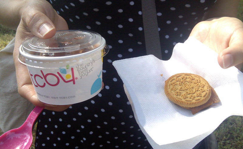 almond fro-yo and cookie
