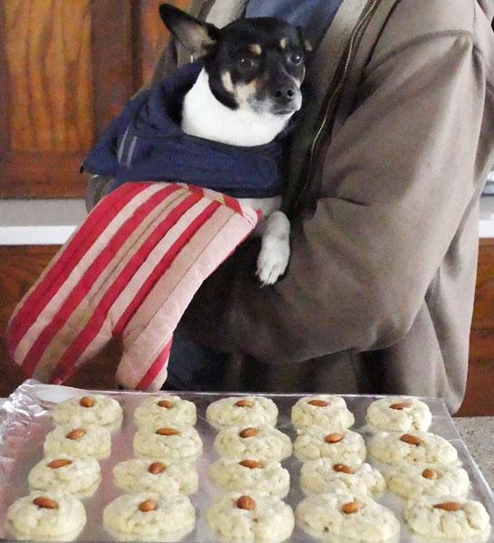 stinkle_almondcookies