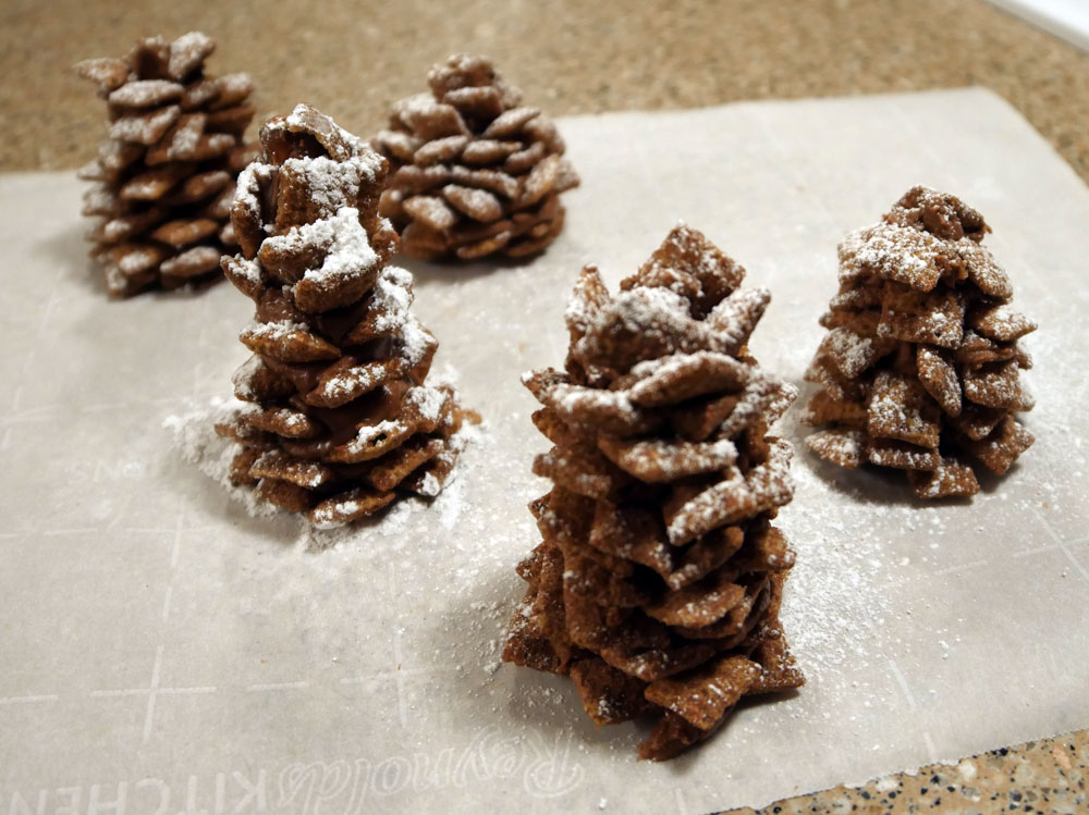 vegan chocolate pine cones